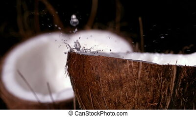 Water raining down on coconut on black background in slow...
