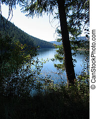 a view along a tree-lined water reservoir on the Pend D'Oreille River in British Columbia