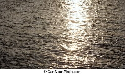 Water ripples on a sunny day.