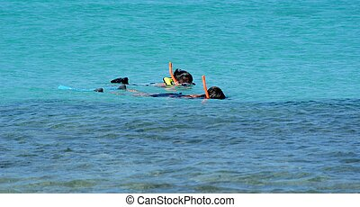 water snorkling - two people in blue water with snorkle