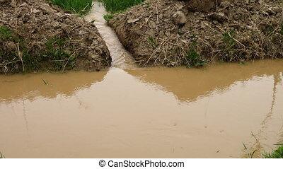 Water Spilling into Farmland - Handheld, medium close up...
