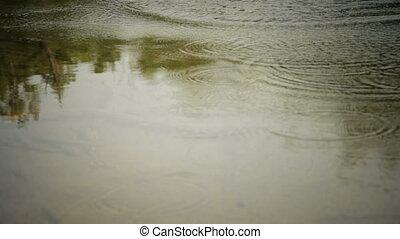 Water Splash !