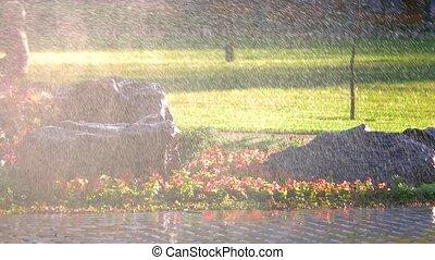 Water splashing in the garden park. Water sprinkler,...