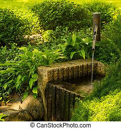Water Spout in Japanese Garden