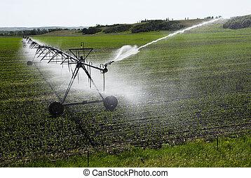 Water spray.