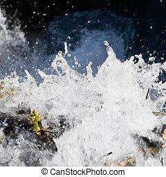 water spraying in nature