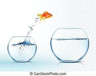 water, springt, goldish, afbeelding, uit, kom