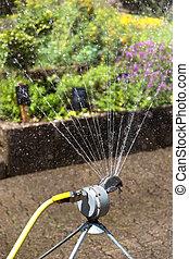 water sprinkler in a garden