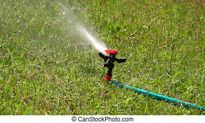 Water Sprinkler Irrigation on Grass