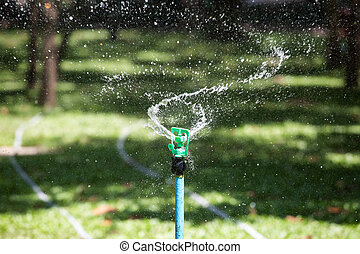 Water sprinkler on a garden