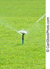 Water sprinkler on green grass