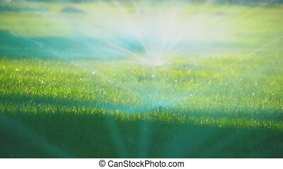 water sprinkler sprinkles a green lawn near the house....