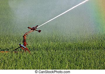 Water sprinkler system irrigating a farm field
