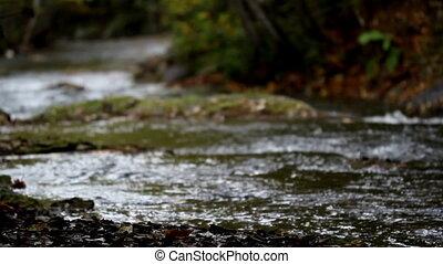 Water stream flowing white water