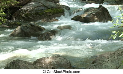 Water stream in a forest - Mountain river in the southern...