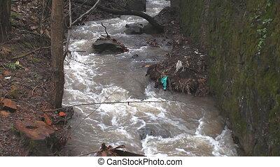 Water stream in creek after rain