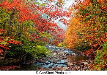 Water stream in rural Vermont
