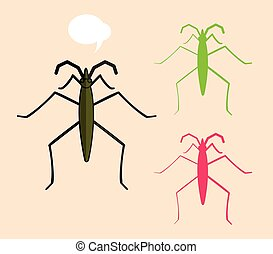 Water Strider Insects Vector Illustration