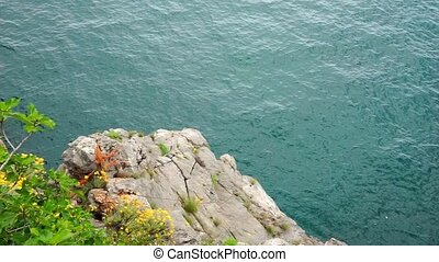Water Surface back - Sea coast. Water Surface background....