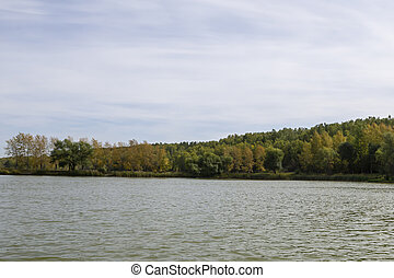 water surface of a forest lake on an autumn day