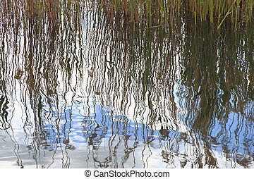 Water surface texture with ripples and sky, reed reflection