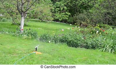 water tool woman garden