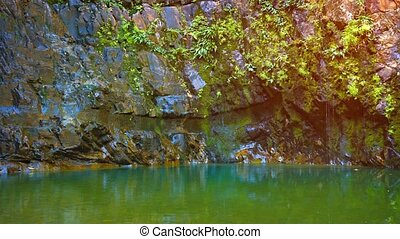 """Water Trickling Slowly down a Rocky Cliff into a Pool, with..."