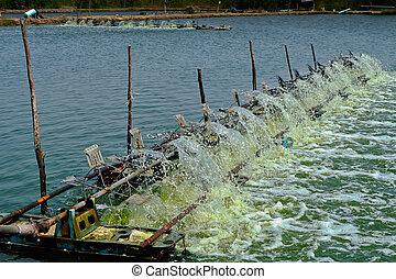 water turbine produce oxygen for shrimp farm