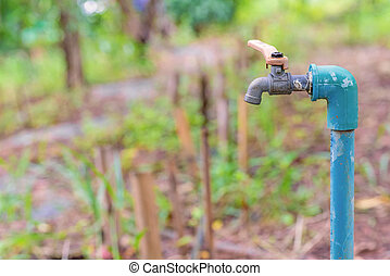 water valve or old faucet in the garden