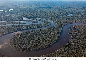 water., vue, dense, amazone, reflet, exotique, avion, forêt, rivière