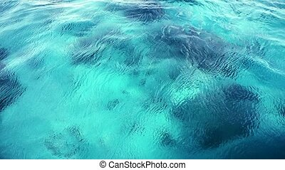 Water wake of a boat in the tropical sea. HD