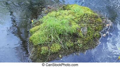 water washes a large stone covered with moss.