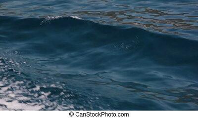water waves in moton