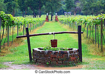water well - Closeup of  Water well in vineyard