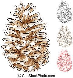 watercolor, 锥形物, 松树