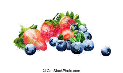 Watercolor appearance animation of the blueberries and...