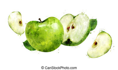 Watercolor appearance animation of the green apple on the...
