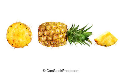 Watercolor appearance animation of the pineapple on the...