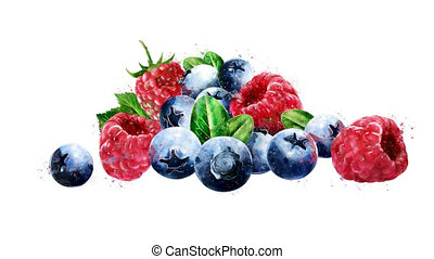 Watercolor appearance animation of the raspberries and...