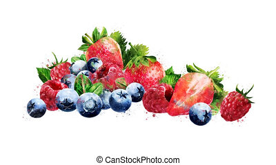 Watercolor appearance animation of the raspberries,...