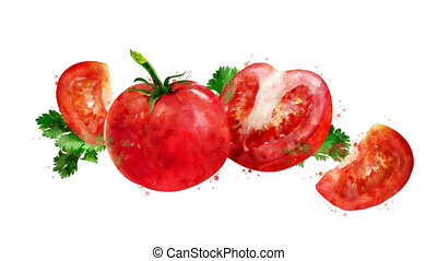 Watercolor appearance animation of the tomato on the alpha...