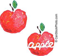 Watercolor apple. Vector