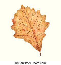 Watercolor autumn leaf isolated on white background