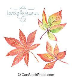 Watercolor autumn leaves.