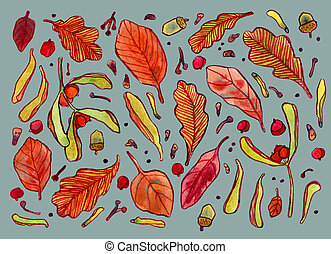 Watercolor autumn leaves, berries and tree seeds