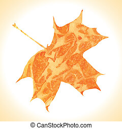 Watercolor autumn maple leaf. Vecto