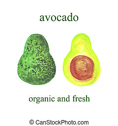 watercolor avocados - whole and half isolated on a white background
