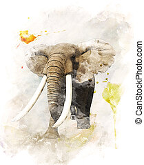 watercolor, beeld, elefant