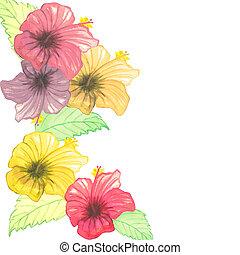 watercolor blooming hibiscus border