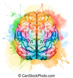 Beautiful vector image with nice watercolor brain